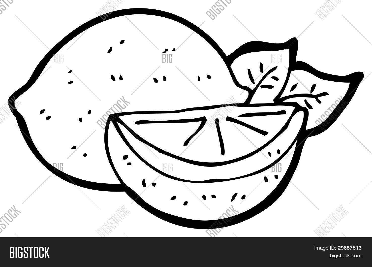 Sliced Lemon Cartoon Raster Image Amp Photo