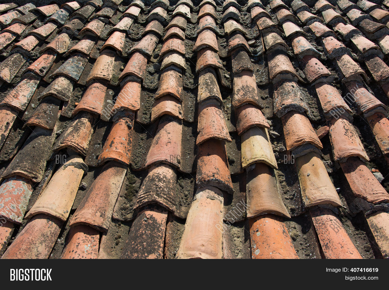 orange roof tiles image photo free