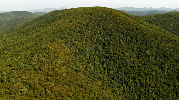 Facts about The Appalachian Trail - Business Insider