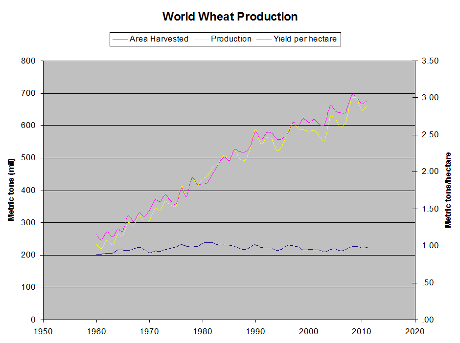 "Over the past century, the world has produced ever more food from the same (relatively) finite supply of arable land. For example, this chart shows global wheat production in the past 50 years. The blue line is farmland. The yellow line is total wheat production. The pink line is ""yield per hectare."" Production is rising because yield is increasing."