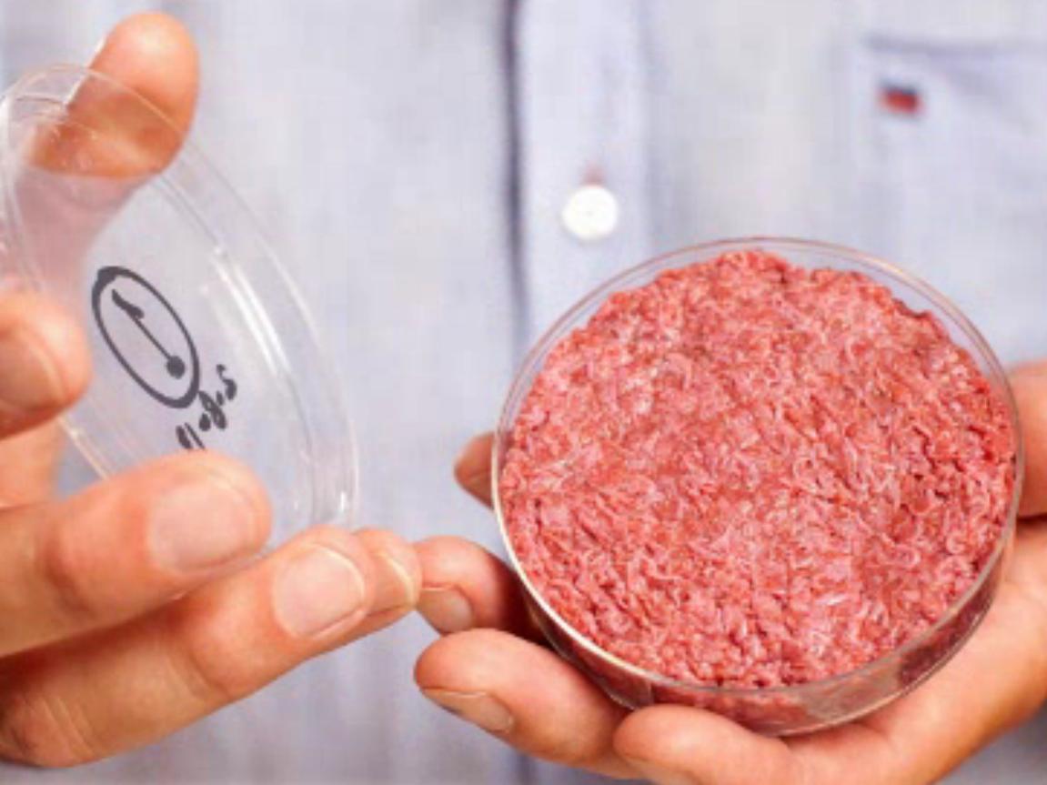 tube à essai en laboratoire cultivé hamburger artificiel