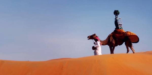 Google Street View Liwa Desert Camel - Business Insider