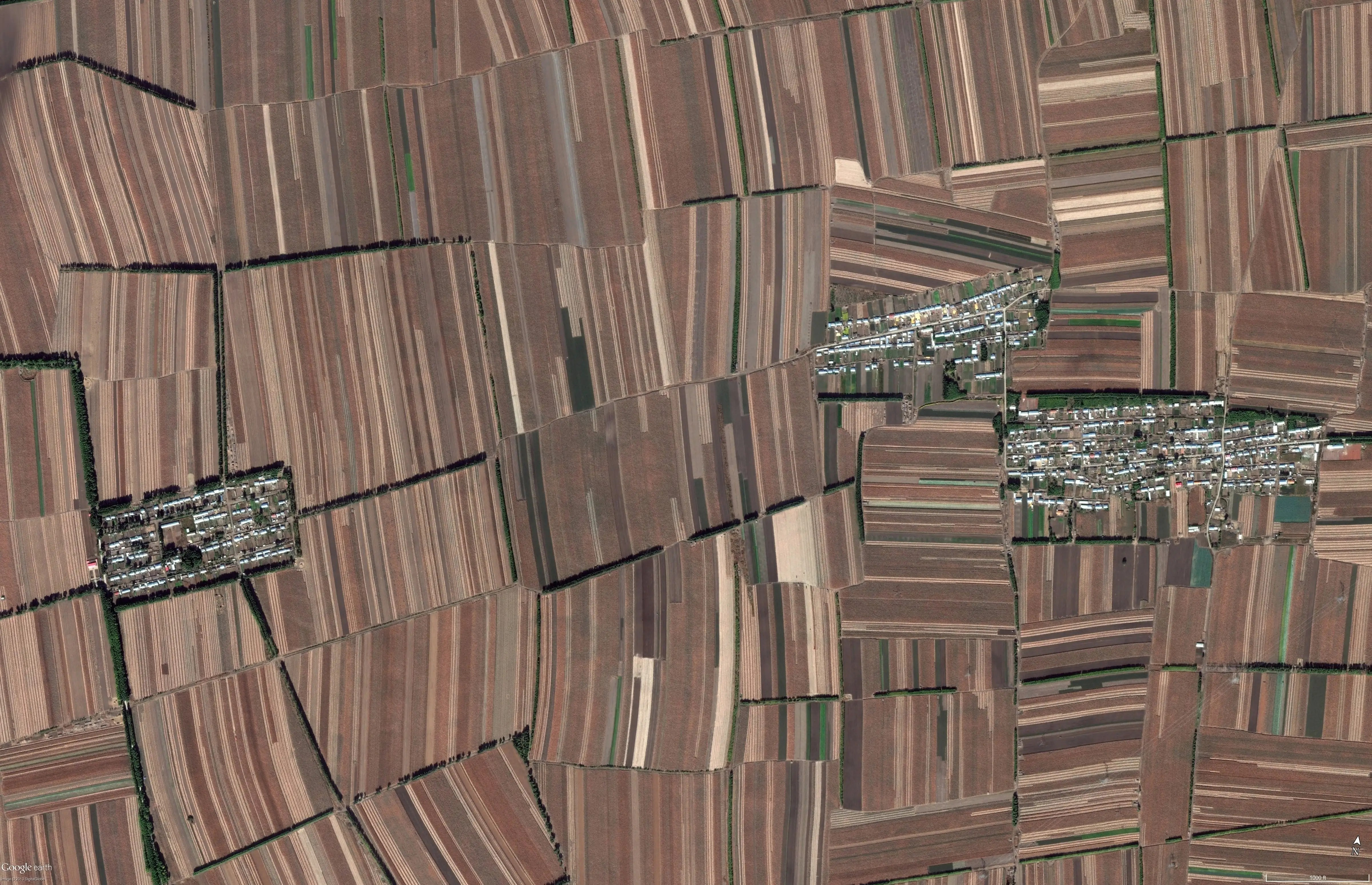 No room for nature, this entire landscape in China is devoted to crop production. There's a shortage of land suitable for farming in the country, so the space that they are able to use is made sure to be used to its full advantage.
