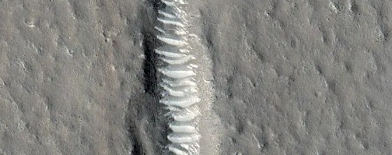 Fractures in Utopia Planitia line up eerily neatly.