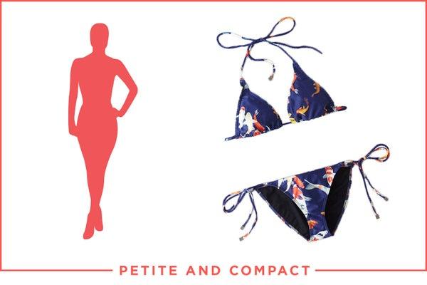 new_petitecompact