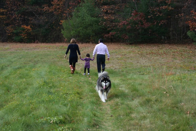 The family dog walk