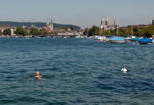 Swimming in Lake Zurich Switzerland
