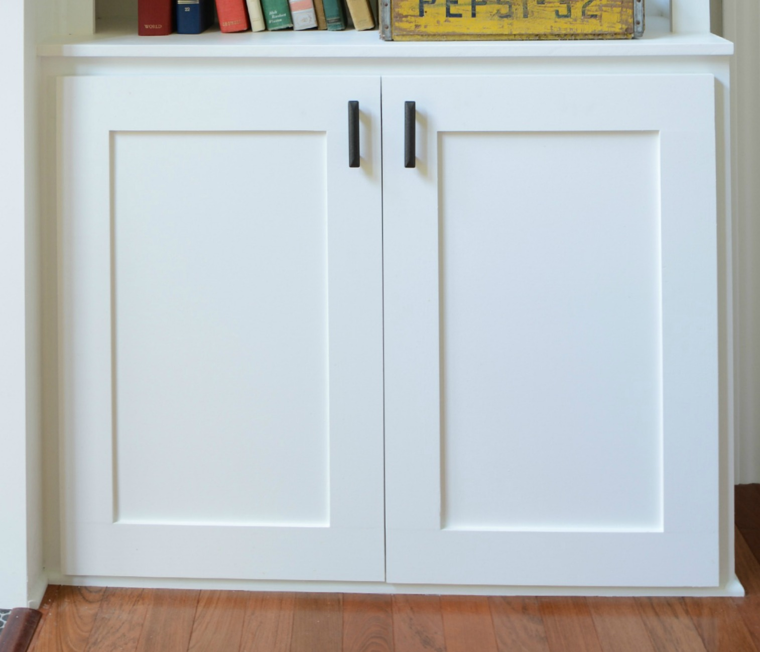 How To Build A Cabinet Door Decor And The Dog