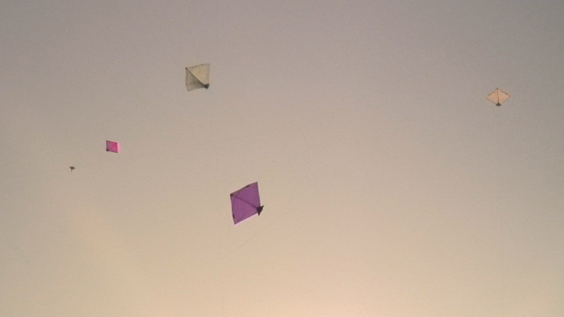 Kite festival, Gujarat, India with Sarah Schwartz