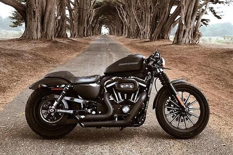 Harley Caferacer Kit Gasoline
