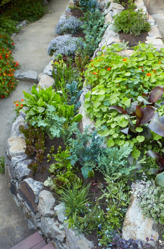 Stone terraced vegetable garden