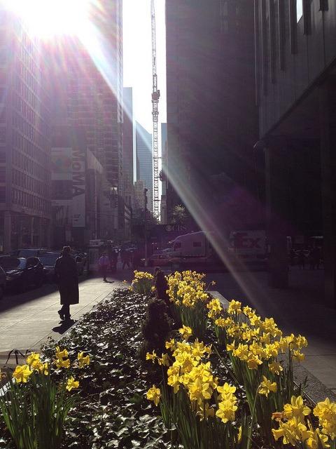 Sunshine to Landscape on Flickr.