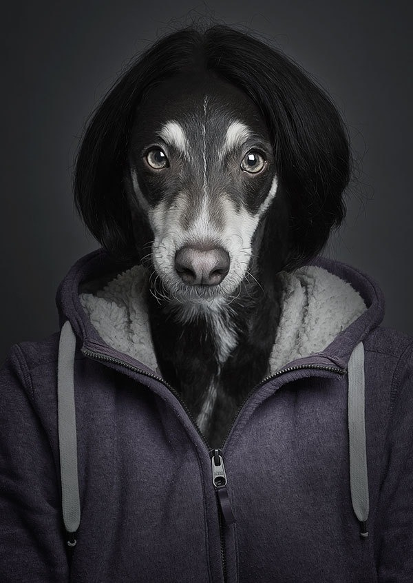 The real Snoop Lion.  Underdogs by Sebastian Magnani