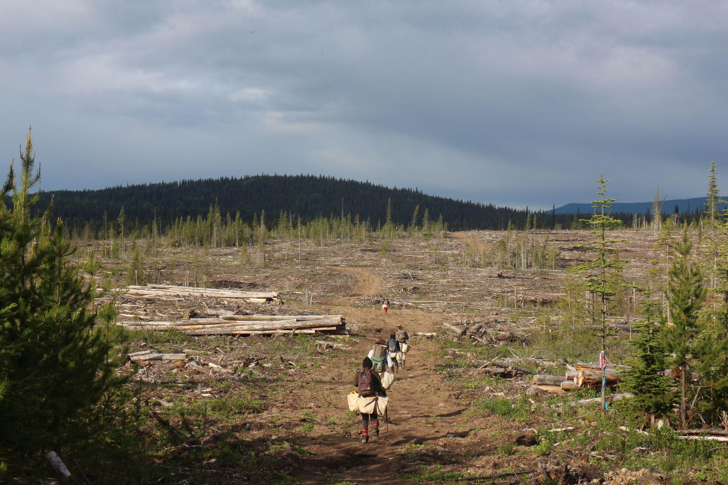 a walk in block in British Columbia