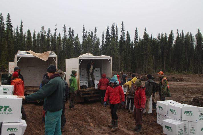 unloading the trucks for helicopter slings on the Morrison camp