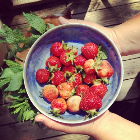 For weeks throughout last summer, my wife brought in bowls of strawberries from the back yard. She made the bowls, too!