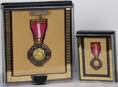 Image result for padma bhushan award