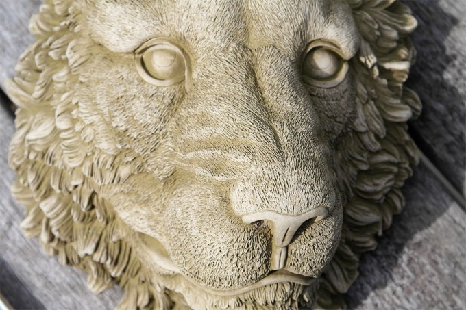 Lions head - £10, from a chap who makes repro. garden bits, planters, birdbaths ect for ridiculously cheap prices.