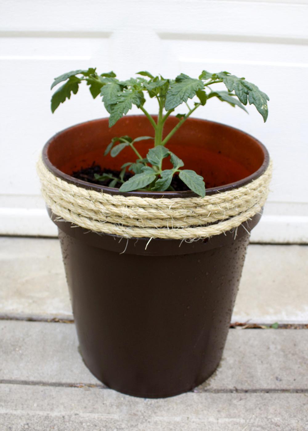 Raised Corner Planter
