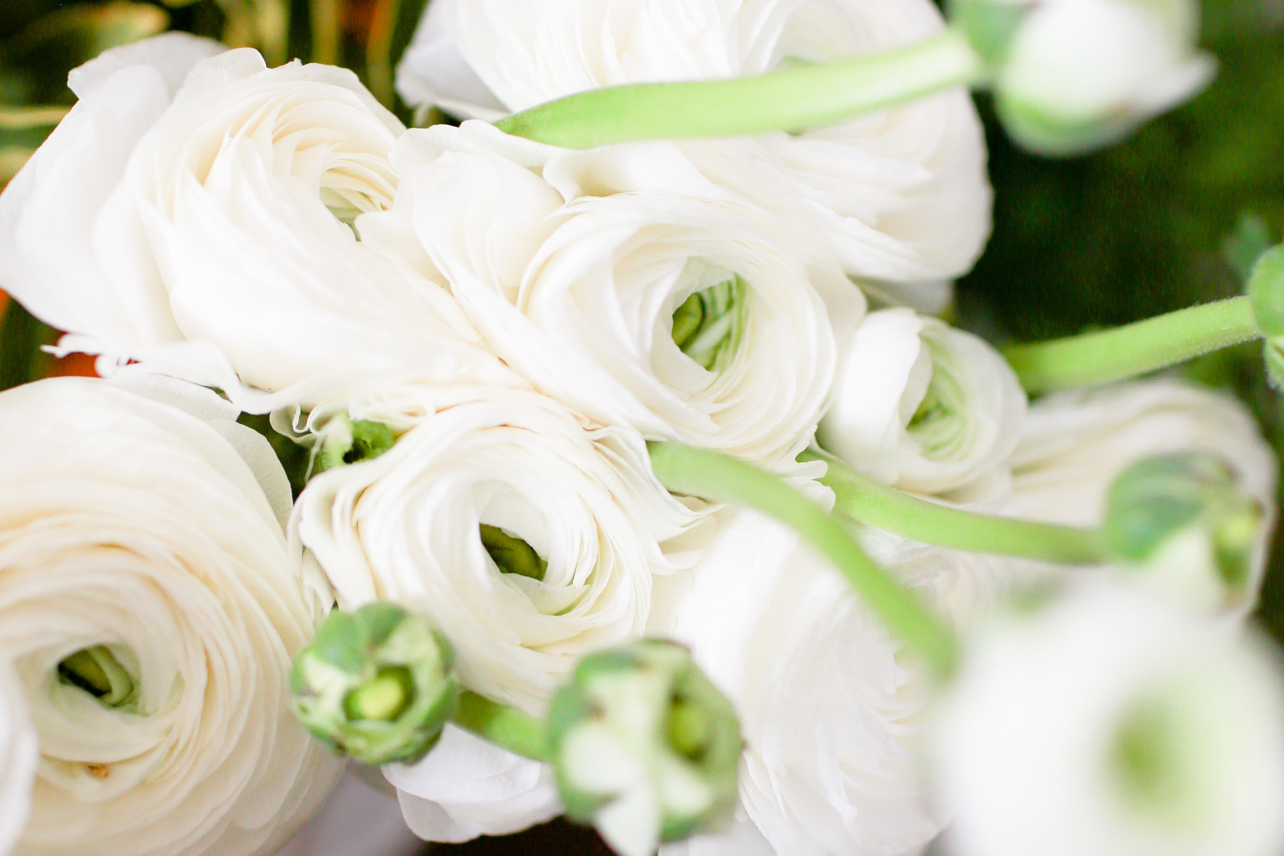 Ask A Professional Florist // Why Do Wedding Flowers Cost