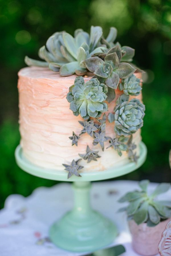 The Ultimate Guide To Succulent Wedding Decor     A Lowcountry Wedding     Image via Tulle  amp  Chantilly