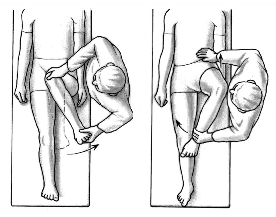 Hip Flexion Normal Range