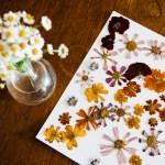 Pressed Flower Art For Your Home Retro Den Vintage Furniture And Homewares