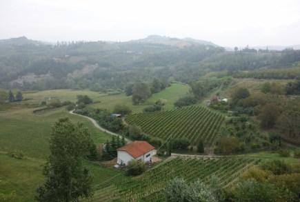 Brachetto Countryside - Commune di Rocchetta Palafea (2).jpg
