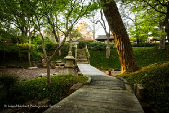 Docent Tours of the Japanese Garden