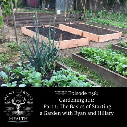 hhh episode 58 gardening 101 part 1 the basics of starting a garden sthealthy hunter
