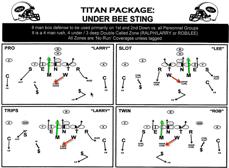 This is one play call. Titan package is the personnel, Under is the alignment, and Bee Sting is the play. It is drawn up on how it should be executed versus those formations.