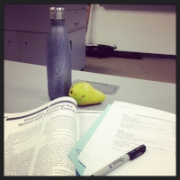 My view for most of the classroom time.
