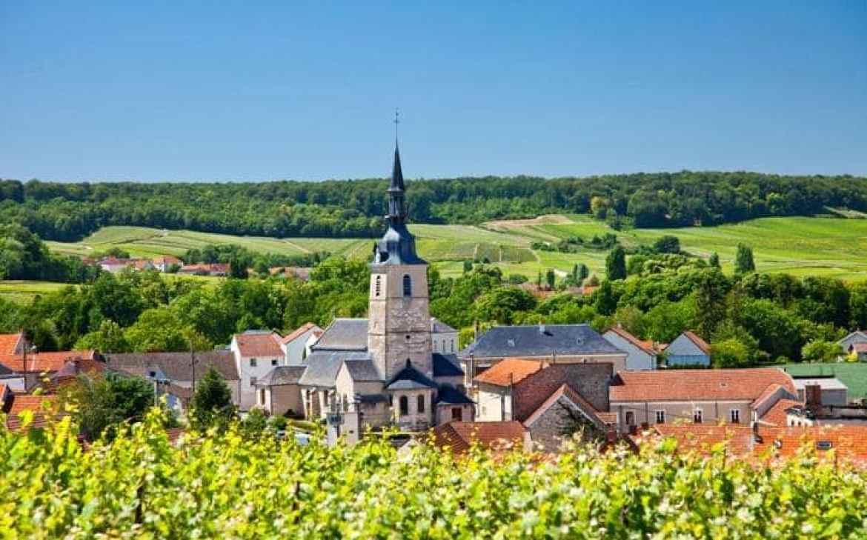 Champagne-Marne-C6_3138801a-large.jpg