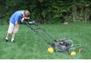 mowing lawns economics