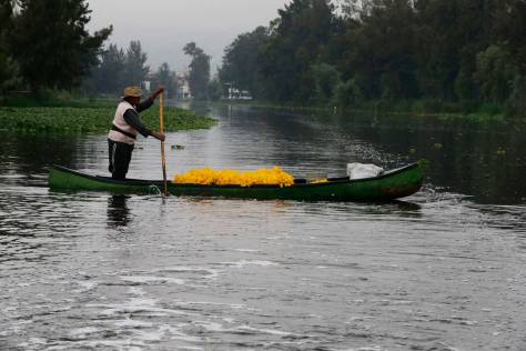 Mexico City floating farms, chefs team up to save tradition