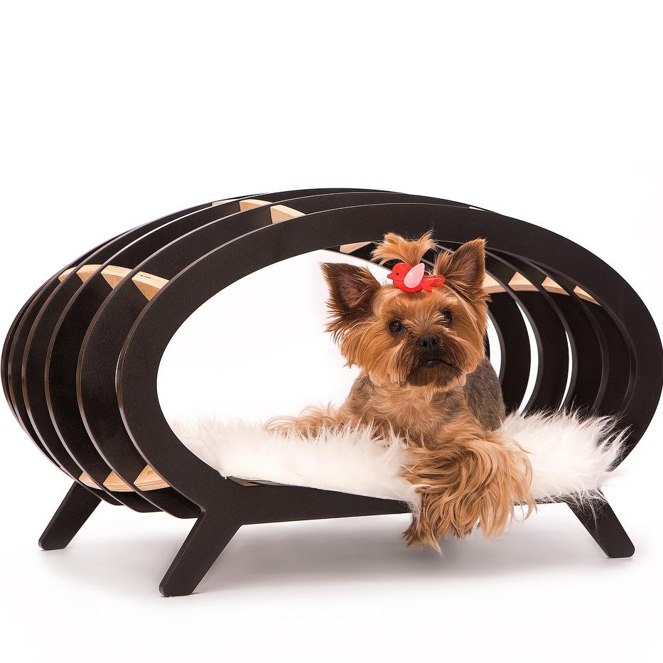 ultra modern pet