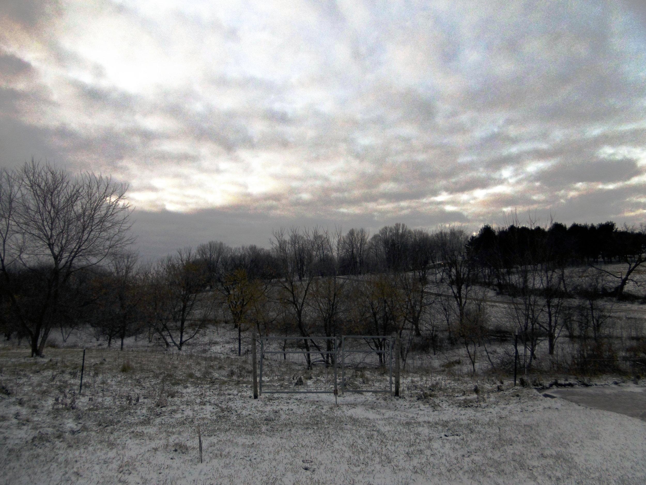 snowy dust fields