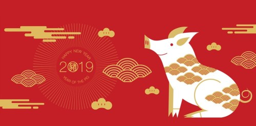 Chinese New Year: Earth Pig 2019