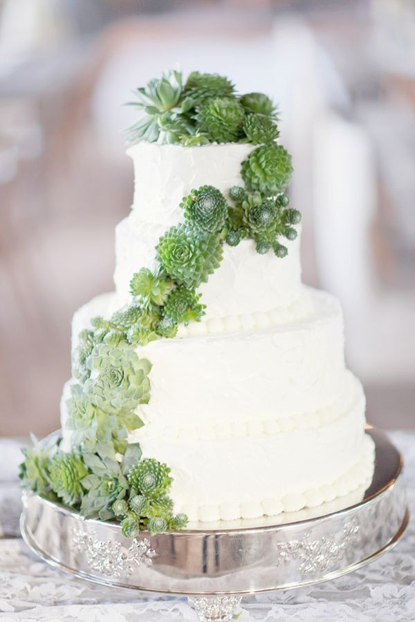 30 succulent wedding cake ideas  2015 s hottest cake trend     Wedpics     Photo by Simply Bloom Photography