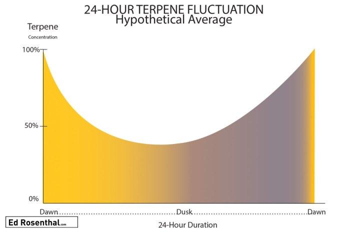 terpene-fluxuation-ed-rosenthal.jpg