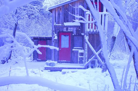 Side of wood-sided building with shed roof and red door, smaller structure behind with red door, trees and branches in foreground, all thickly covered with heavy snow