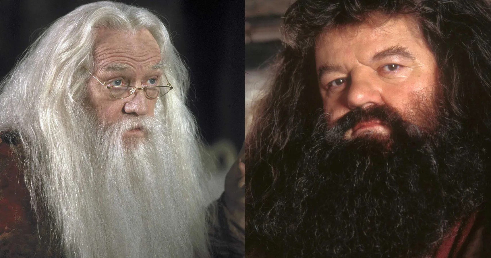Harry Potter 10 Reasons Why Hagrid Amp Dumbledore Aren T