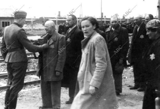 Auschwitz: campo de concentración en Polonia. Un médico nazi decidía en pocos segundos quién vivía y quién moría