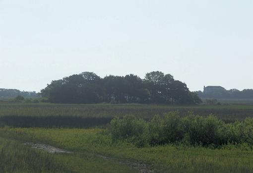 Ubicación del Fuerte Mosé, en el actual Fort Mose Historic State Park.