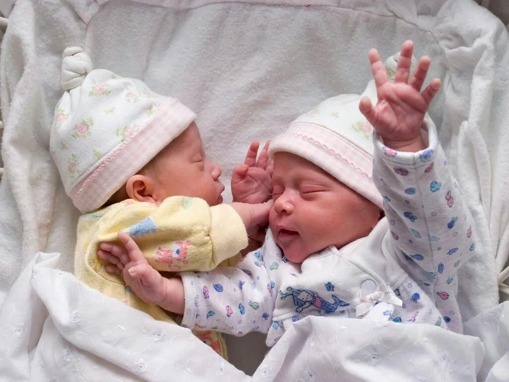 Scientists have figured out why so many twins are born lately