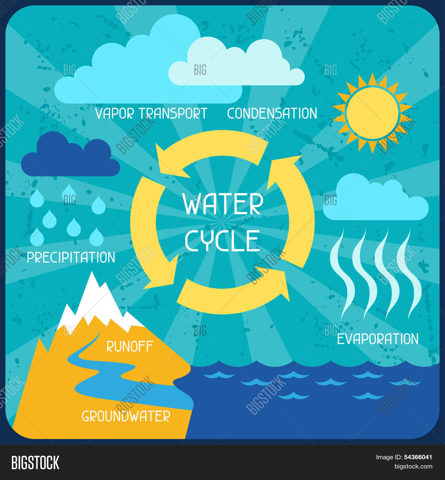 Water Cycle Poster Vector Amp Photo Free Trial