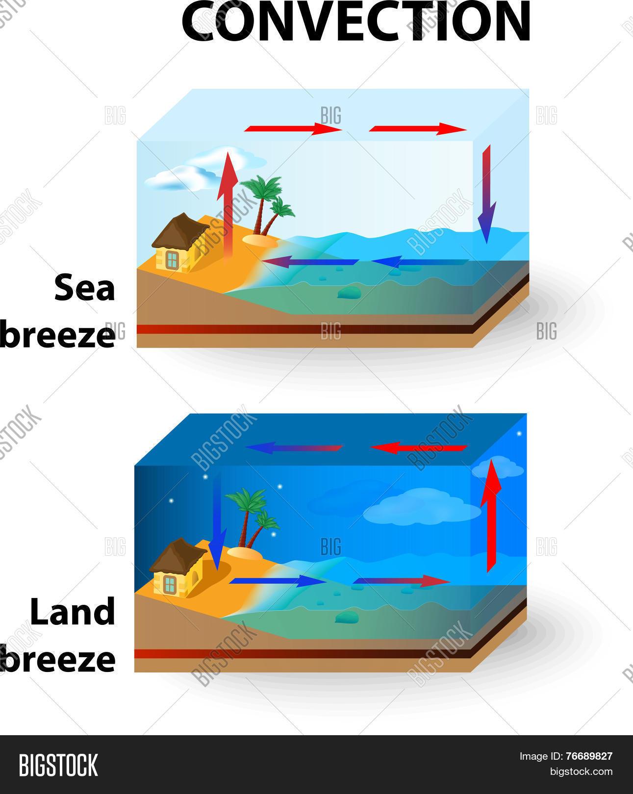 Convection Land Breeze Sea Breeze Vector Amp Photo