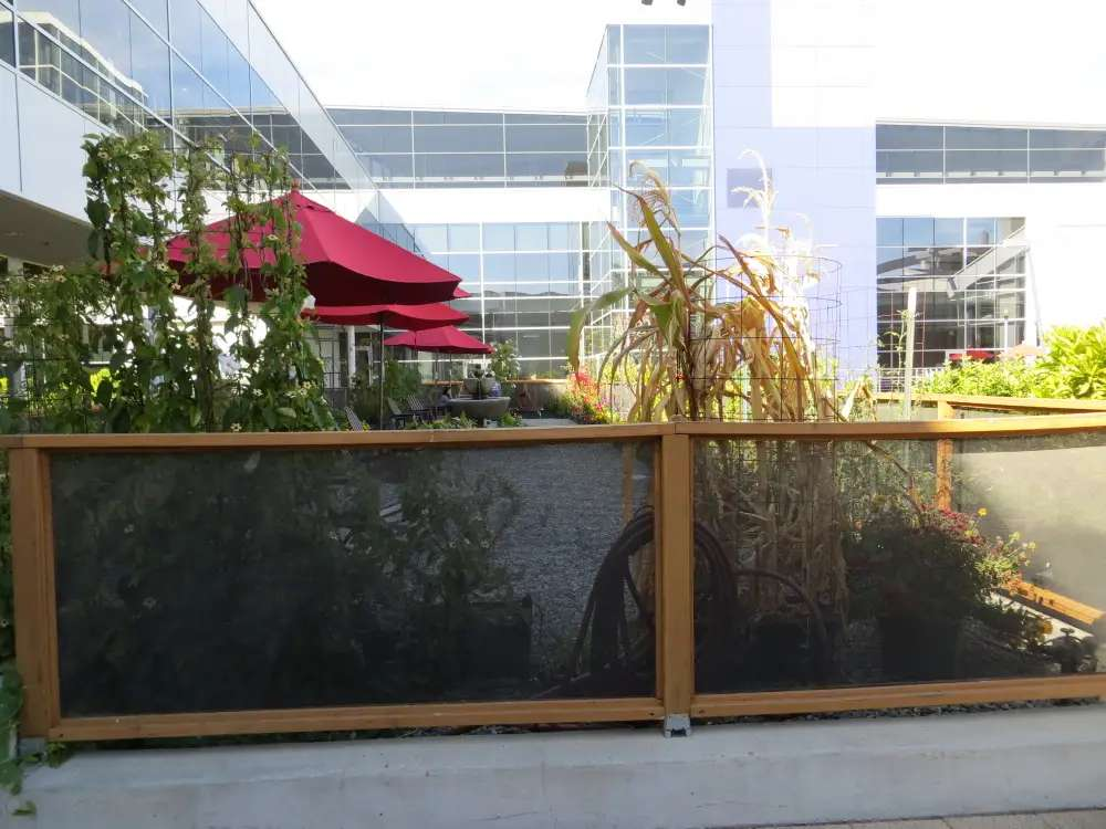 There gardens also have tables and chairs as a quiet meditative spot for employees.