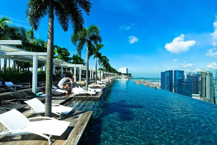marina bay sands infinite pool palm trees