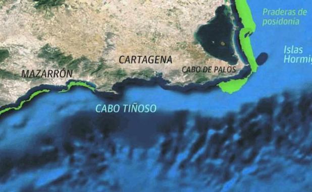 La futura Área Marina Protegida.